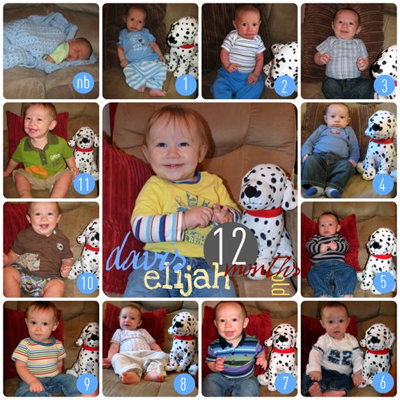 davis 1 to 12 collage