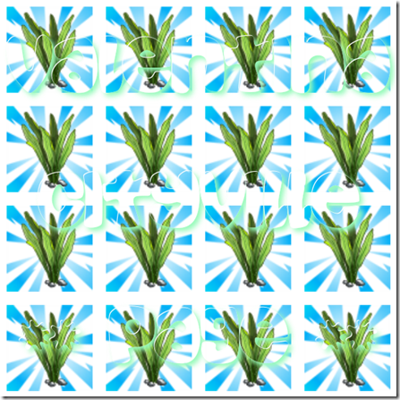 3 alga