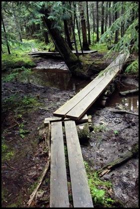 Jordan Stream and 4 bridges 214