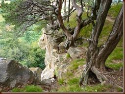 Gibraltar Rock Park WI