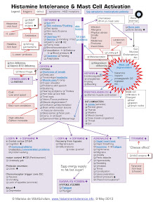 Histamine-Intolerance-and-Mast-Cell-Activation-cascade-of-symptoms.pdf - Adobe Acrobat 25082013 234158.jpg