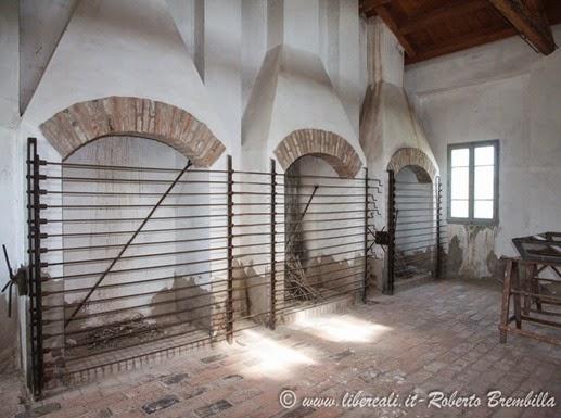 14_2014-05-21_Valli di Comacchio_Delta Po (60)