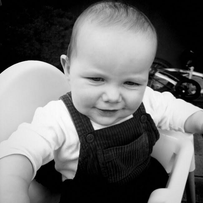 ace - my sweet sweet boy