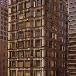 102.- Reliance Building Chicago