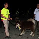 Pet Express Doggie Run 2012 Philippines. Jpg (1).JPG