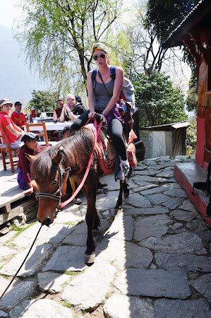 Trekking Nepal: Calare pe magar