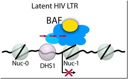 latent_VIH