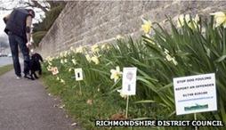 _67062899_dogwastemarkers-richmondshire