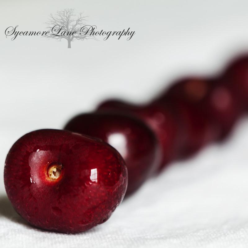 cherries-sycamoreLane Photography
