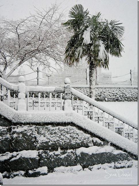 Victoria in Snow