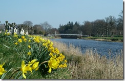 daffs3 and priorsford bridge
