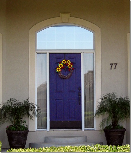 Colorful Purple Front Door