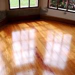 Tablón de madera maciza para interiores - Piso en Algarrobo o Granadillo.jpg