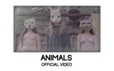 The GOASTT - Animals