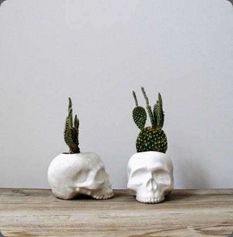 cactus bloodandchampagne5564
