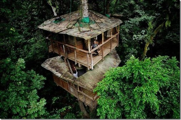 awesome-treehouses-13