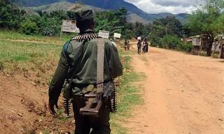 Milicien FDLR. Photo AFPm