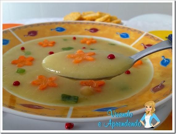 Sopa de Legumes3