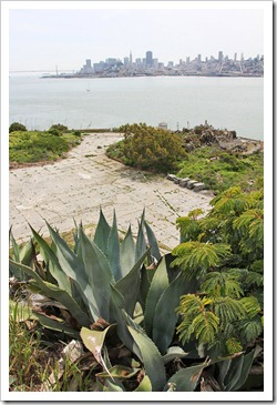 120408_Alcatraz_138