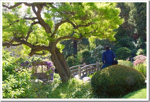 120427_Hakone_176