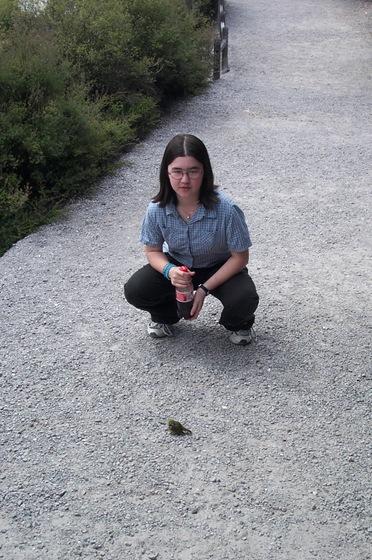 12-090-Annies bird