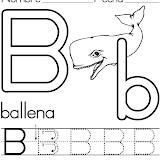ballena (2).jpg