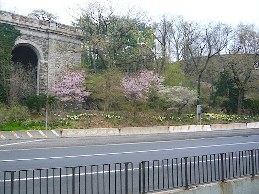 The base of Fort Tryon Park, part of the successful restoration efforts taken on by New York Restoration Project, www.nyrp.org. Hats off to Bette Midler for spearheading this effort.