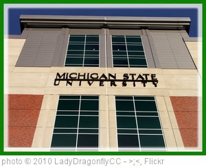'MSU Spartan Football Stadium' photo (c) 2010, LadyDragonflyCC - >;< - license: http://creativecommons.org/licenses/by/2.0/