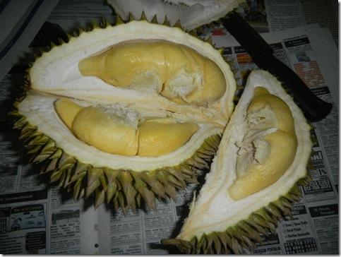 Durian Balik Pulau 3