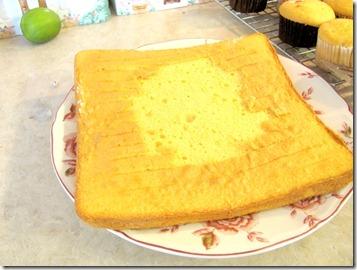 half cakes