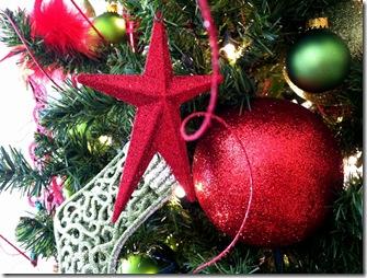 Christmas 2011_7