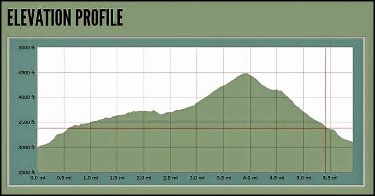00b - Elevation Chart