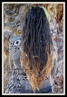 Back of Dreadies 2mo