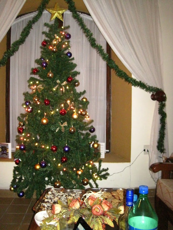 The Christmas tree in our hostel.