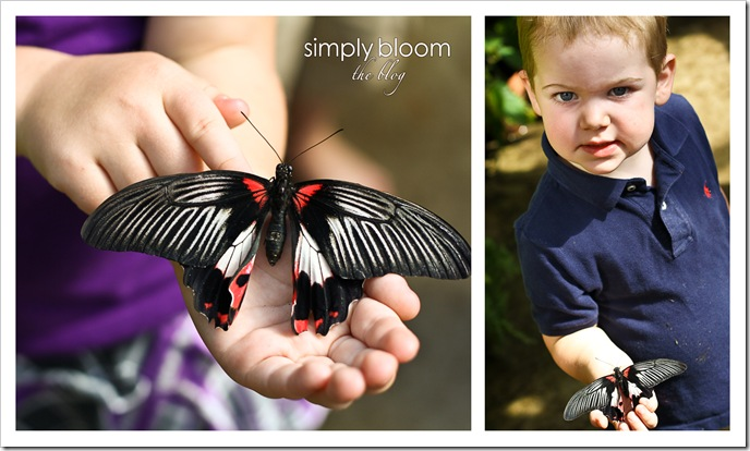 Kids with Butterflies