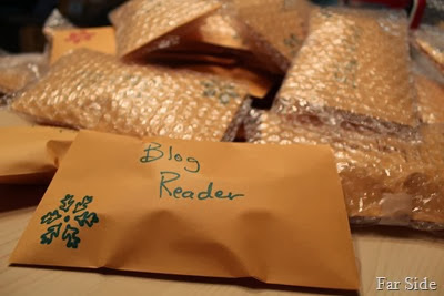 Blog Reader Christmas ornament