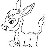 burro_8.jpg