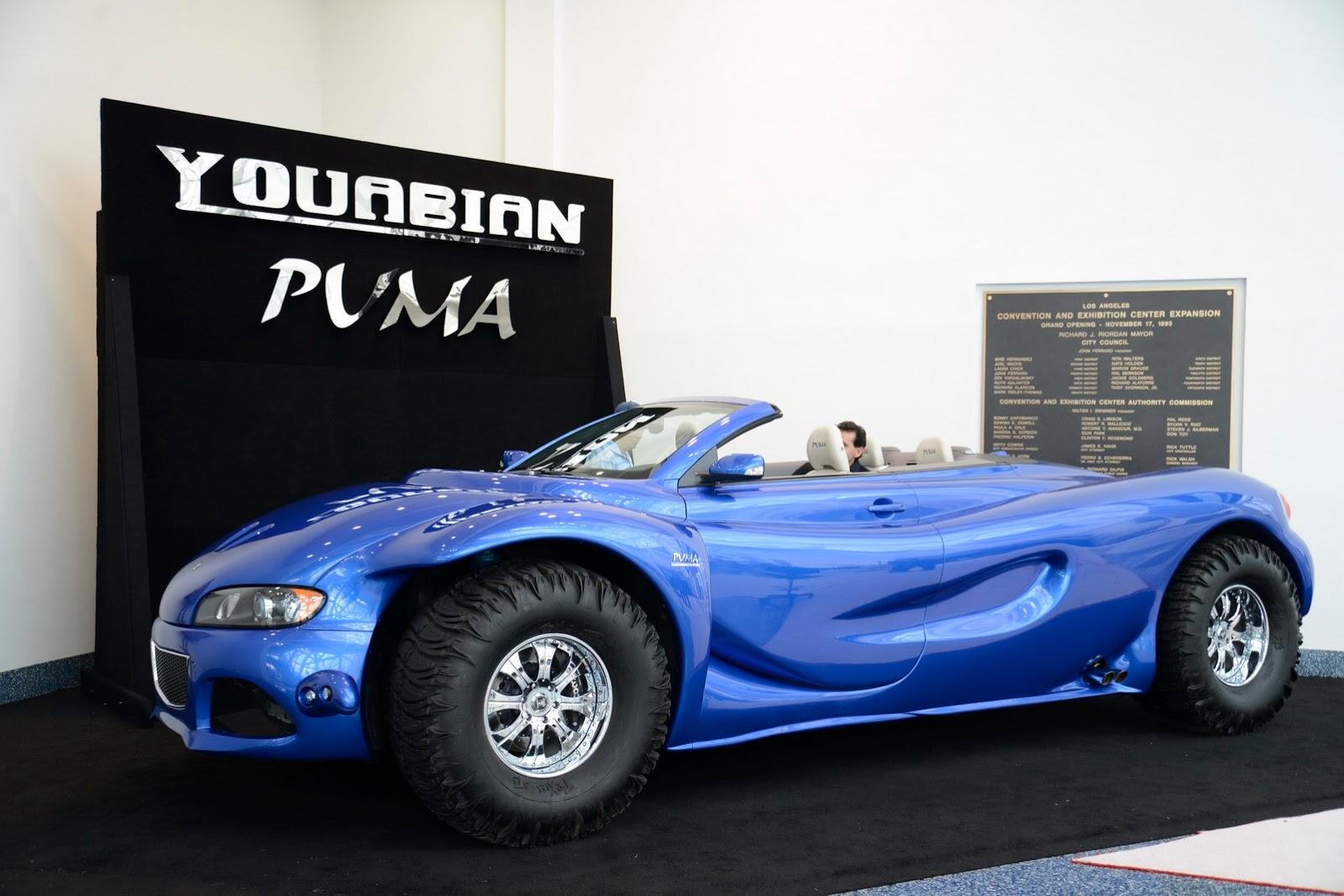 Youabian-Puma-3%25255B2%25255D.jpg