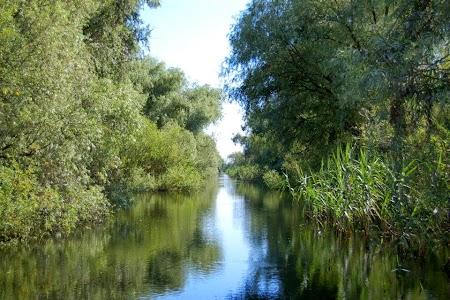 Plimbare cu barca in delta.jpg