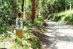 Całkiem ciekawy sposób oznakowania szlaku :-)