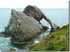 ptk bow fiddle rock