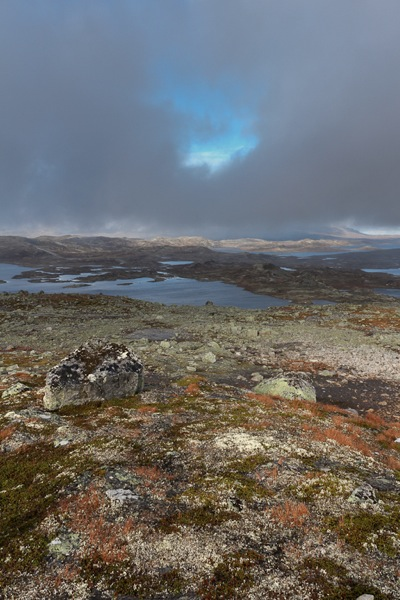 Vista dragiedfjorden