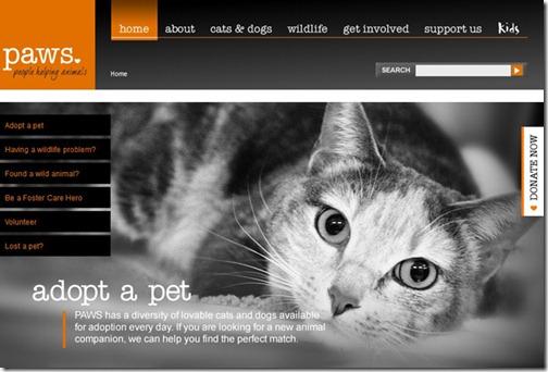Tech News How To Create An Effective Non-Profit Website
