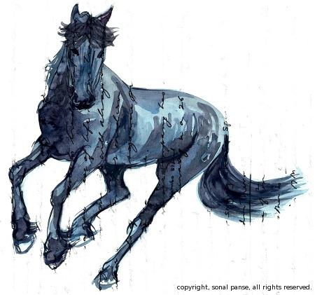 Horse4d1