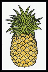 pineapple041
