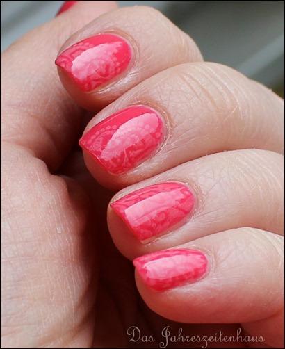 Pink Apricot 3