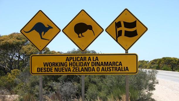 aplicar working holiday dinamarca desde nueva zelanda australia