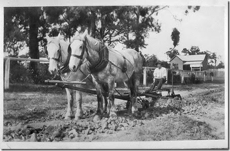 -Harold-Parnell-preparing-road-surface-at-Huskisson