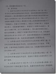 Chen Kegui Verdict_Page_09