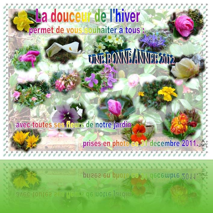 1janv2012AMTtexteBW